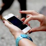 comportamento_celular_606_455