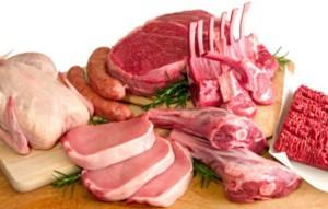 proteina animal