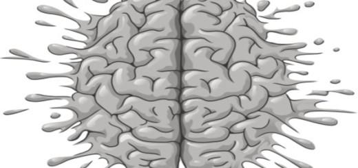 alcohol-cerebro-estructura