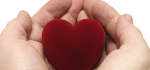 valentine day - man's hands with heart